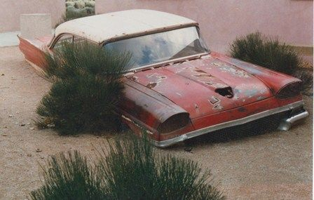 1958 #Ford quite literally sinking into #Nature. #Classic #Beauty #RustinPeace