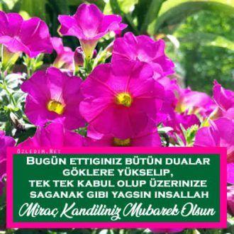 miraç kandili resimli kutlama kartları  www.ozledim.net  #kandilmesajları #kandil kutlama kartları #miraçkandilikutlamamesajları