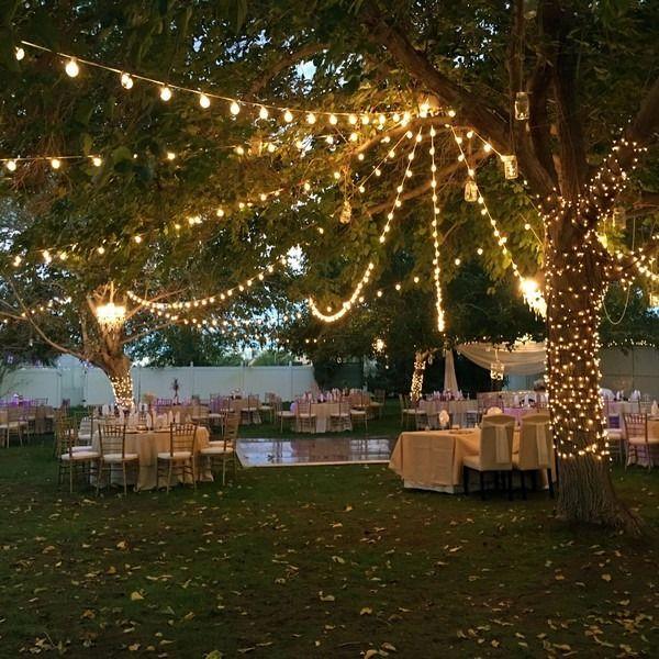 30 Budget Friendly Backyard Wedding Ideas Wedding Backyard Reception Wedding Reception Menu Outdoor Wedding Reception