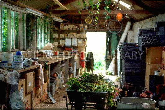 Garden shed interiors garden pinterest gardens for Garden shed interior designs