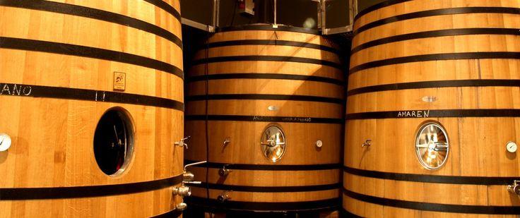 bodega-amaren-winery-luis-canas-rioja-oak-vats