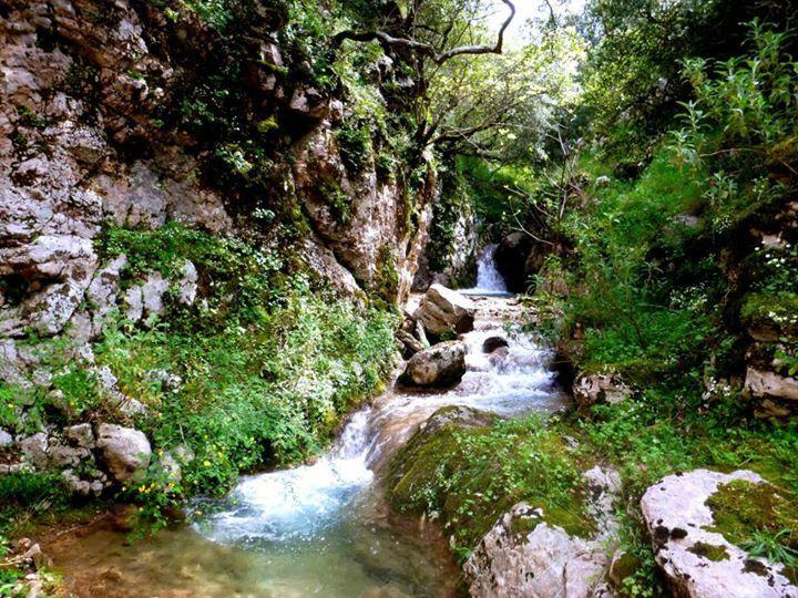 Elliniko village in Achaia -Greece