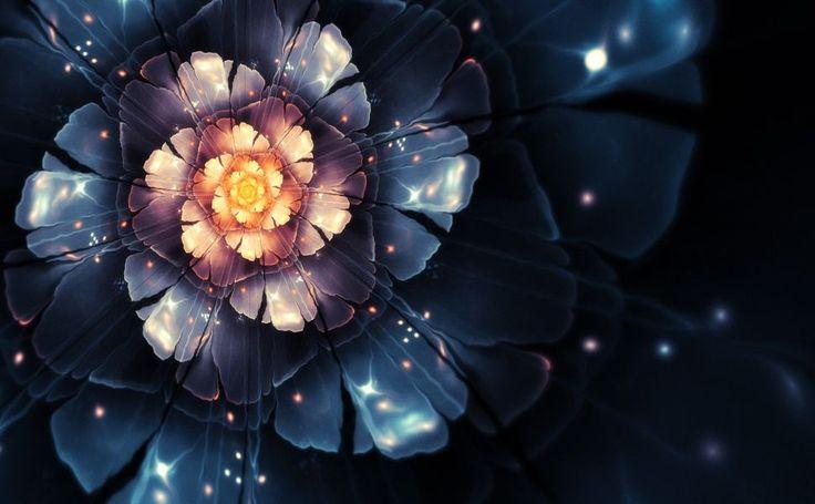 Glowing flower HD Wallpaper