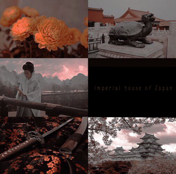 Imperial house of Japan aesthetic #Japan #history