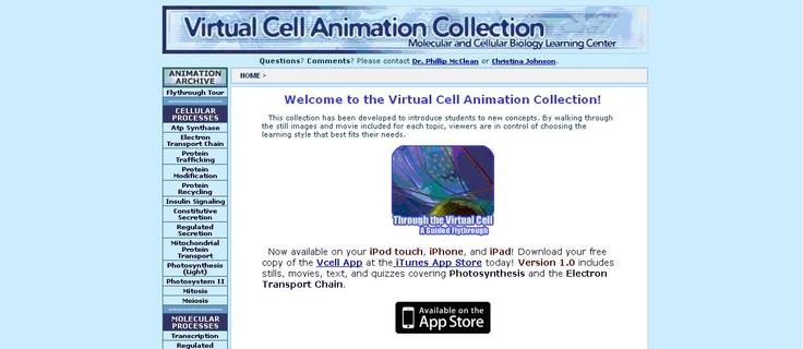 Virtual Cell Animation Collection es un portal del Departamento de Biología Molecular y Celular de la Universidad Estatal de Dakota del Norte. Alberga una colección de animaciones celulares virtuales explicadas mediante imágenes comentadas, textos y vídeos.