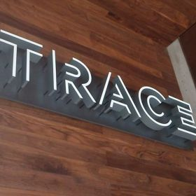 TRACE at the W