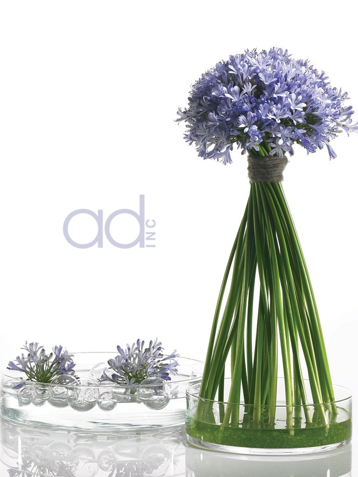 Ideas about modern flower arrangements on pinterest