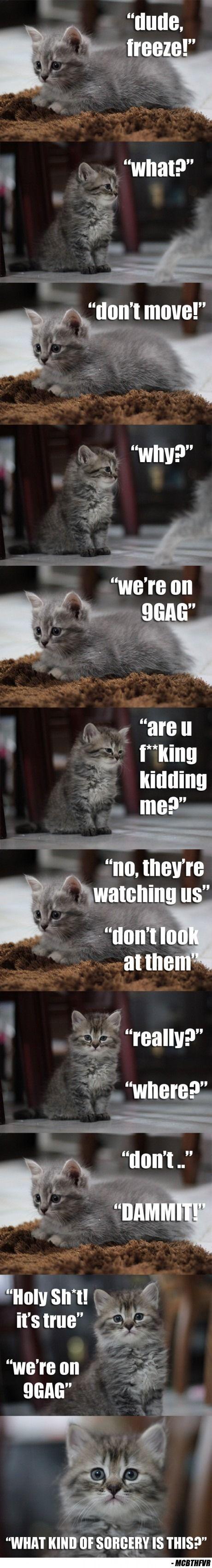 Mine killinger