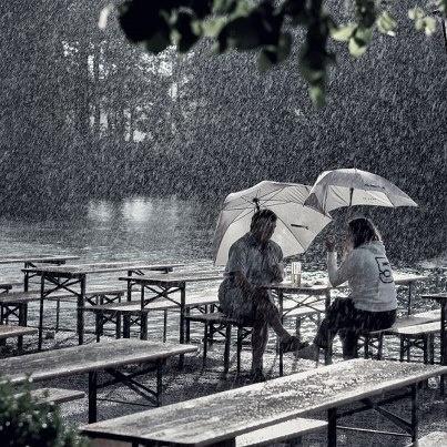 Trend Regen im Biergarten Seehaus im Englischen Garten Rain again Biergarden Seehaus