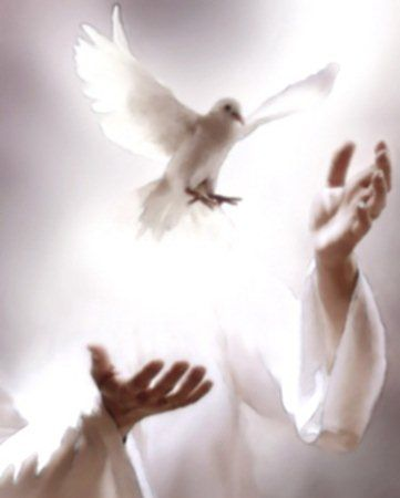 Peace I send to you - God Loves You - Share or Like if you feel his love - http://www.facebook.com/pages/God-Loves-You/177820385695769