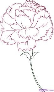20 Best Images About Carnation Tattoos On Pinterest