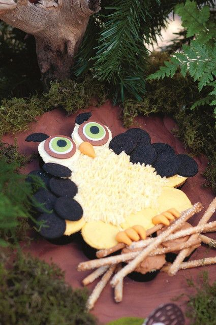 Fantasy forest party: This special cake was made by joining cupcakes into the shape of an owl. Oreo biscuits become wings, and bread sticks form the perch.