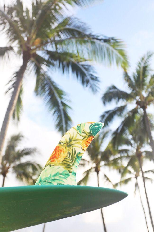 Tropical Island Adventures :: Escape to a Beach Paradise :: Soak in the Sun…