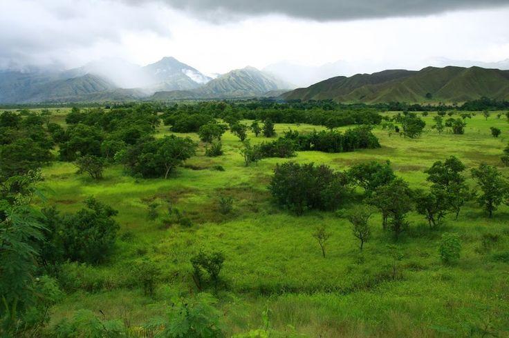 Guinea Landscape - Bing Images