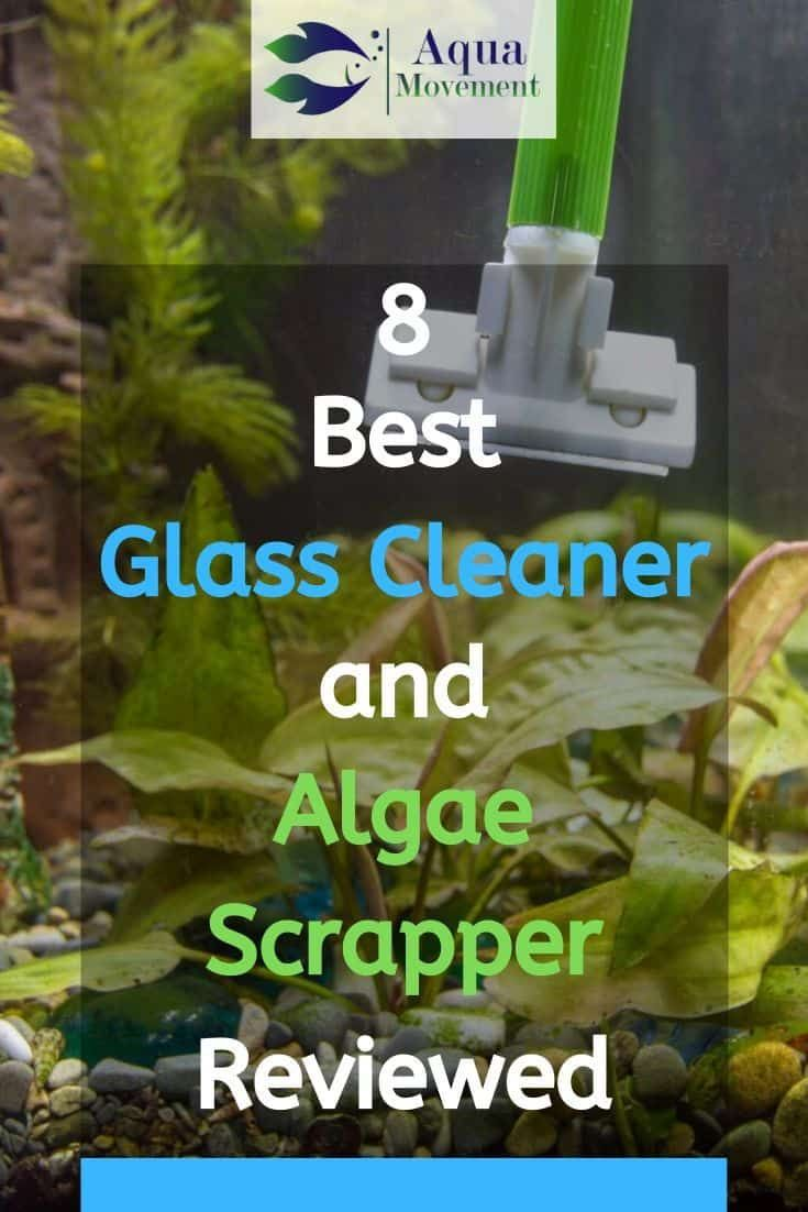 Best Glass Cleaner And Algae Scrapper For Aquarium Glass Fish Tanks Glass Cleaner Aquarium