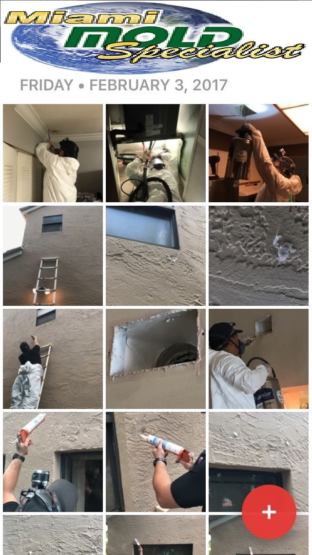 Our mold specialists and contractors will ensure that you have a stress-free experience during the process of restoring