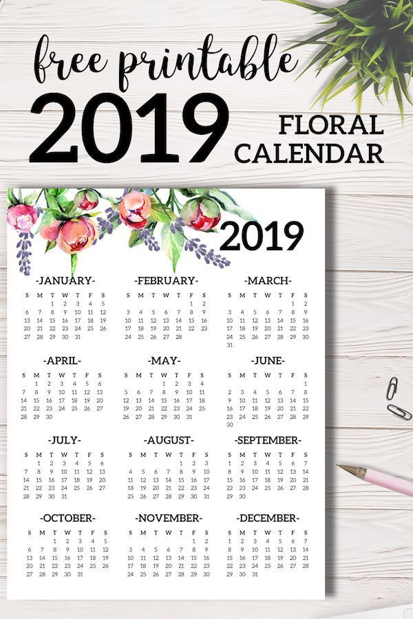 Free Printable 2019 Calendar Yearly One Page Floral Organization