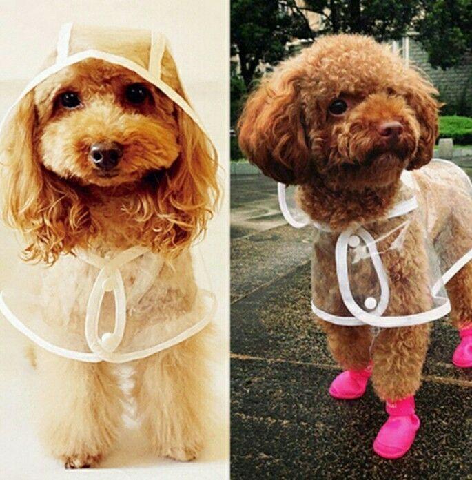 Waterproof Rain Protective Mac Dog Puppy Coat Xs S Small Medium