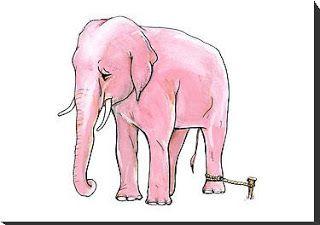 ΨΥΧΟ-ΛΟΓΙΚΑ: Ο Αλυσοδεμένος Ελέφαντας (Χόρχε Μπουκάι)