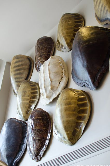 Faux turtle shells at La Marea Restaurant at The Tides South Beach