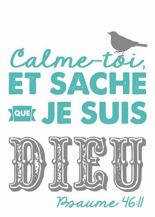 La Bible - Versets illustrés -  Psaume 46 : 11 - Calme-toi,  et sache que je suis Dieu.