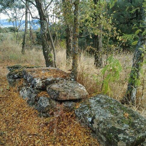 Entorno de la ermita de Ntra. Sra. del Socorro, Coscojuela de Fantova (Huesca)