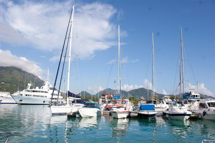 Marina life: Not for land lovers!