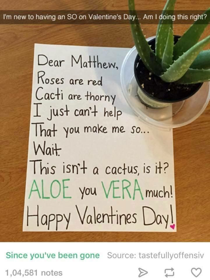 best 25+ funny valentines gifts ideas on pinterest | fireball box, Ideas