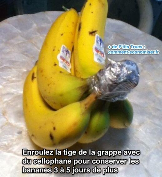 Enrouler la tige de la grappe avec du cellophane pour conserver les bananes 3 à 5 jours de plus