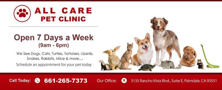 All Care Pet Clinic 3135 Rancho Vista Blvd. Ste. E