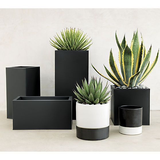 "<span class=""copyHeader"">urban landscape.</span> Black planter squares up sleek and modern. Protected for indoor and outdoor settings, matte-finished galvanized steel plays up refined industrial to dramatic effect.<br /><br /><NEWTAG/><ul><li>Powdercoated galvanized steel</li><li>Drainage holes</li><li>Wipe with a soft dry or slightly damp cloth</li><li>Protected for indoor or outdoor use</li><li>Made in Vietnam</li></ul><br />"