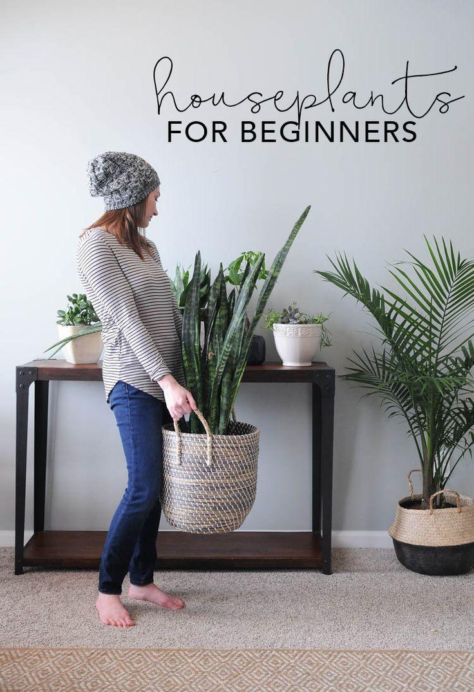 Houseplants for Beginners | My Breezy Room