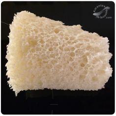 Pan en microondas con sifón 2