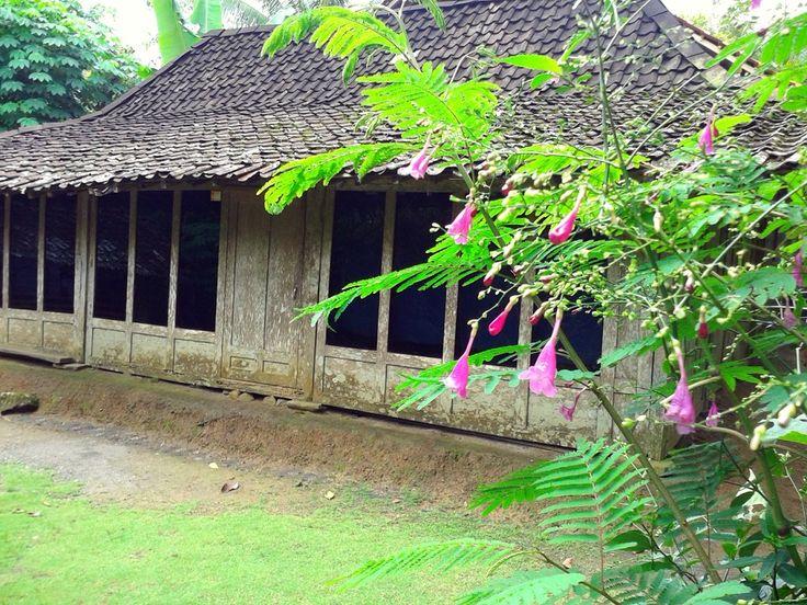 Sebuah rumah penduduk di Girimulyo. Terbuat dari kayu dan beralaskan tanah. Disampingnya terdapat kandang kambing, khas rumah rumah di daerah pegunungan