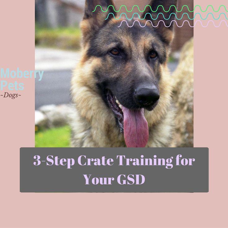 German Shepherd Crate Training Schedule from MoberryPets.com