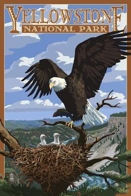 Eagle Perched - Yellowstone National Park - Lantern Press Poster