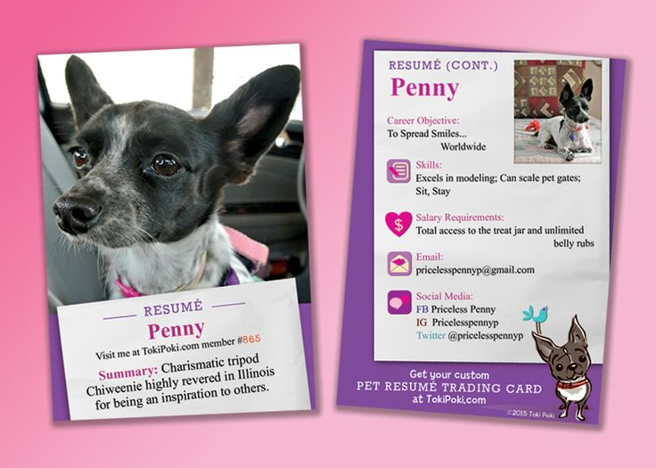 Check out my resume card from Toki Poki! Priceless Penny Pinterest - check my resume