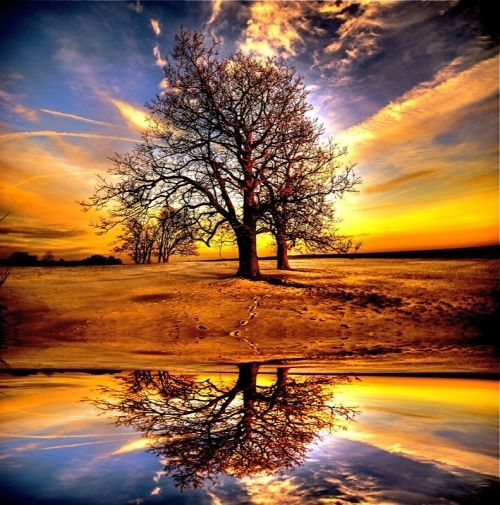 Most Beautiful Landscapes | Beautiful Reflections of Architecture and Landscapes (10 photos) - My ...