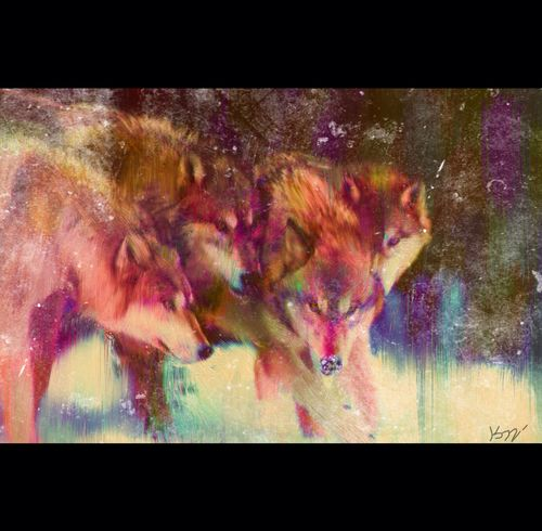 Loups©Art by Kami. No part of this image may be reproduced without the express written consent of the artist