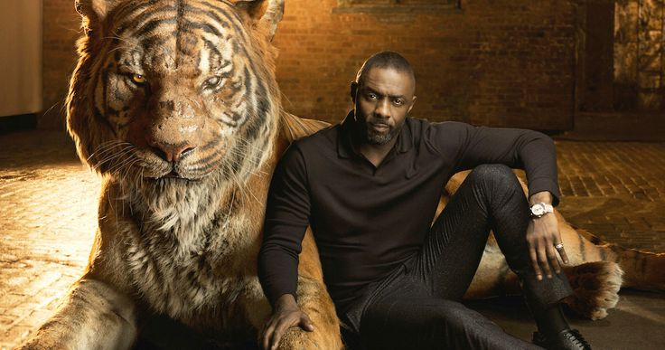 First 'Jungle Book' Clip Introduces Idris Elba as Shere Khan -- Shere Khan warns Akela that 'man-cubs' like Mowgli are forbidden in their animal kingdom in a new clip from Disney's 'The Jungle Book'. -- http://movieweb.com/jungle-book-movie-2016-clip-shere-khan-idris-elba/