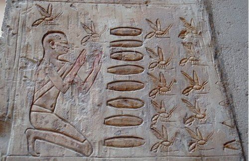Bees / Beekeeping in Ancient Egypt The oldest…
