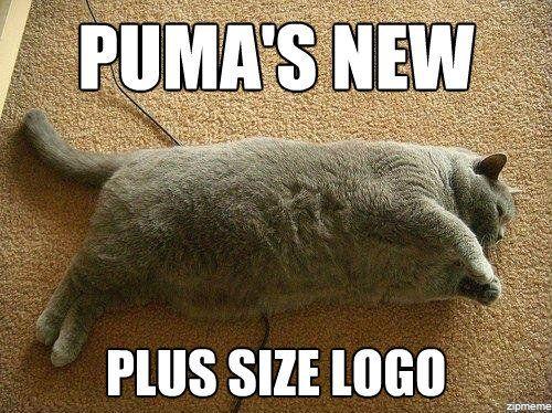 Plus Size Puma!