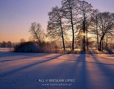 Wiesław Lipiec - Fotograf