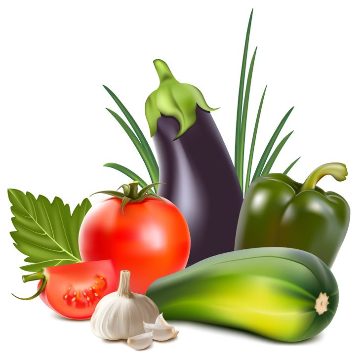 free vector Realistic vegetables vector