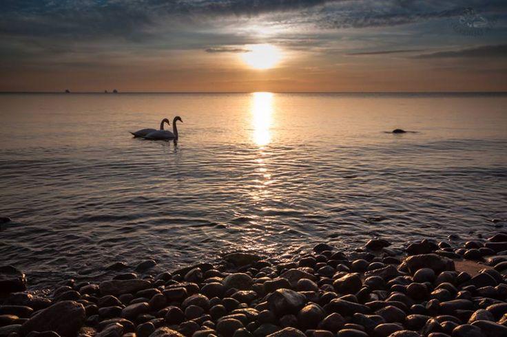 Poranek w Gdyni