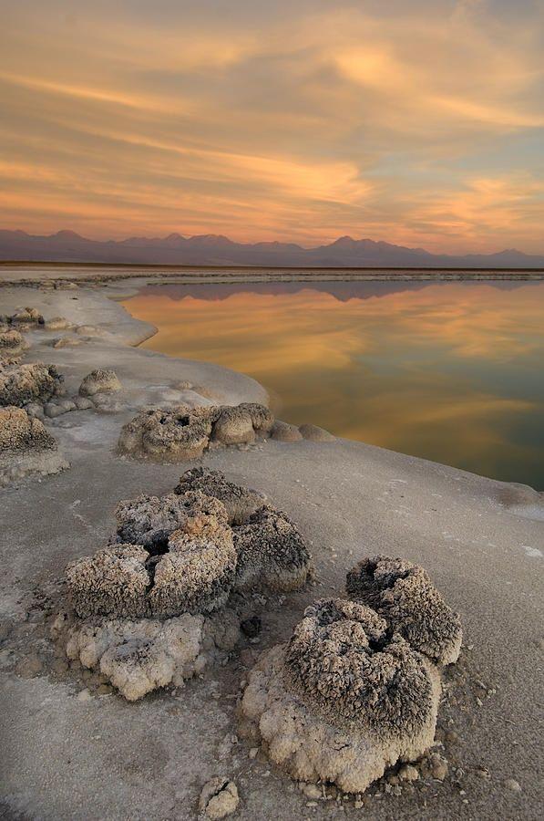 ✯ Laguna Cejas, Atacama Salt Lake, Salar de Atacama, near San Pedro de Atacama, Atacama Desert, Altiplano, Antofagasta, Chile