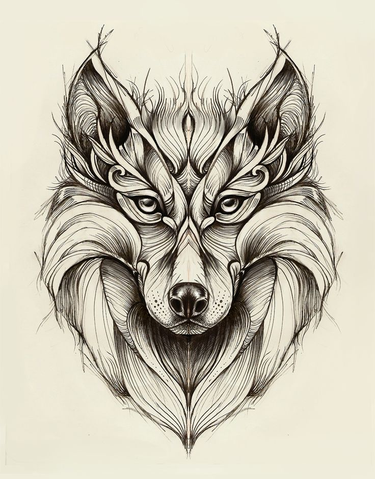 Wolf on Behance                                                                                                                                                      Plus