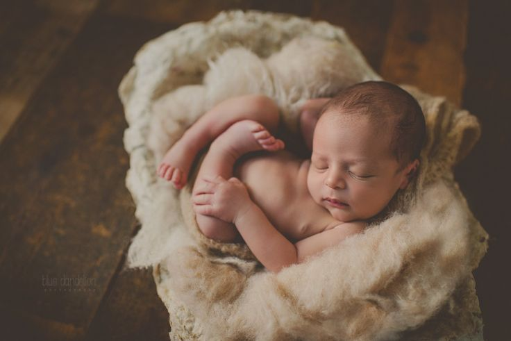 Newborn photography prop vessel used by blue dandelion photography