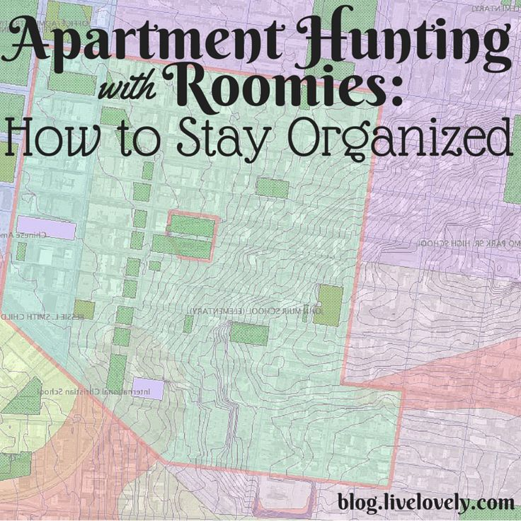 Apartment Hunting: 72 Best Images About Apartment Hunting Advice On Pinterest