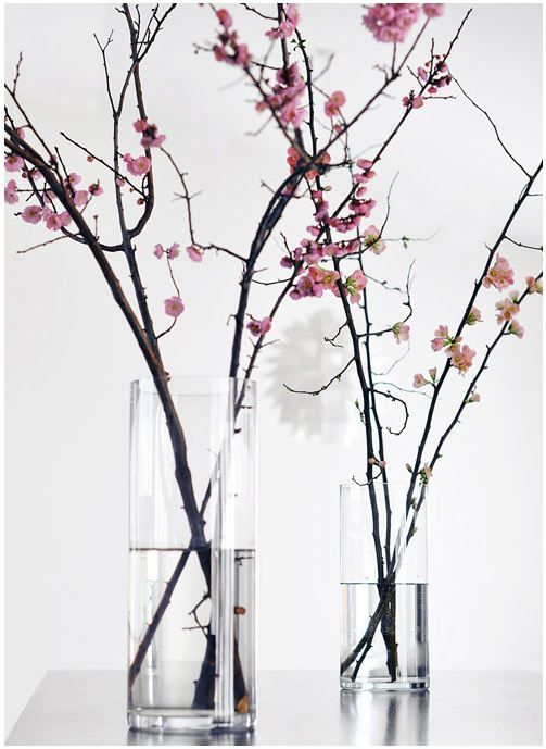 Love the arrangement possibilities in spring - cherry blossoms